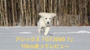 GT2000-7レビュー